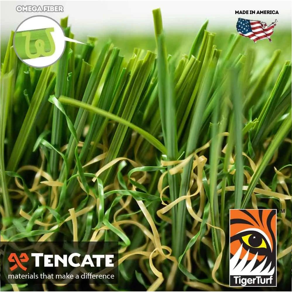 Everglade-Fescue-60oz-3